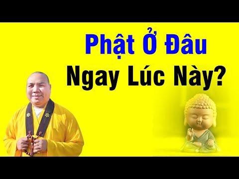 Kinh Pháp Hoa kỳ 62 - Phật Ở Đâ Ngay Lúc Này - Thích Thiện Tài