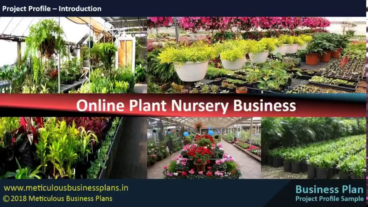Online Plant Nursery Business You