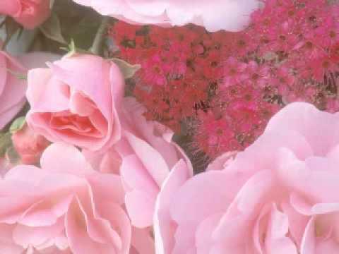 022 - Soorah Al-Hajj - Recited By Al Zayn Muhammad Ahmad Al Zayn