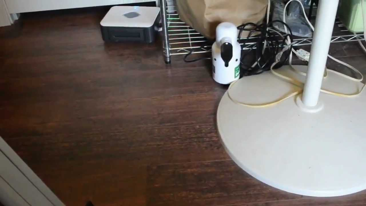 Amazing Evolution Robotics Mint Automatic Hard Floor Cleaner 4200 Review