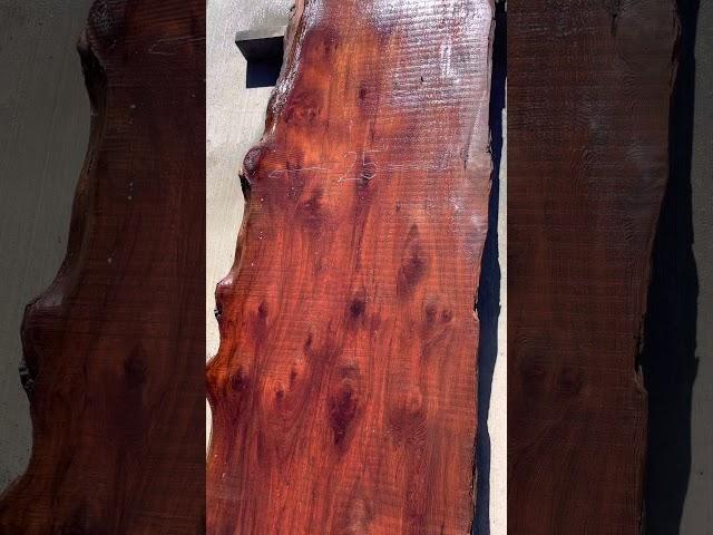 Old Growth Redwood Slab #26