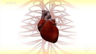 Coletivamente doenças são conhecidas sanguíneos do como e coração vasos