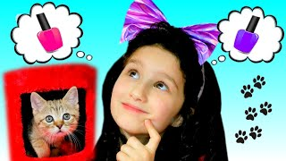 Alice Pretend Play with Funny Kitten | Funny Stories for Kids by Alice and TOYS