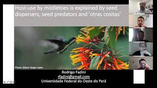 Ecologia de ervas de passarinho - Labic Meeting - Dr. Rodrigo Fadini