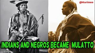 1705 Statute Act Defines a mulatto as a Child of an Indian, & Child of a Negro. No MIXTURE!!