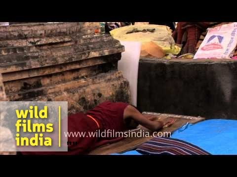 Tibetan pilgrims prostrate to worship at Bodhgaya - 32nd Kalachakra