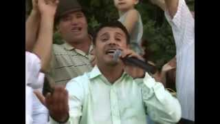 MUZICA de PETRECERE cu NICU PALERU (Colaj Video)