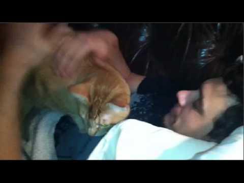 James Franco Love cats - YouTube