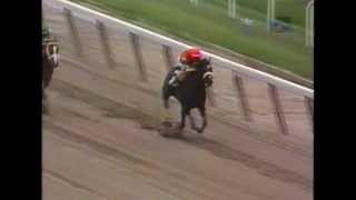 *Breaking The Belmont Track Record* - Kelly Kip - 1996 Belmont Maiden Claiming Race