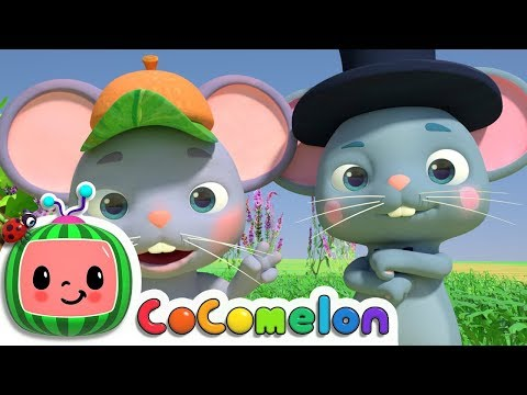 The Country Mouse and the City Mouse | CoComelon Nursery Rhy