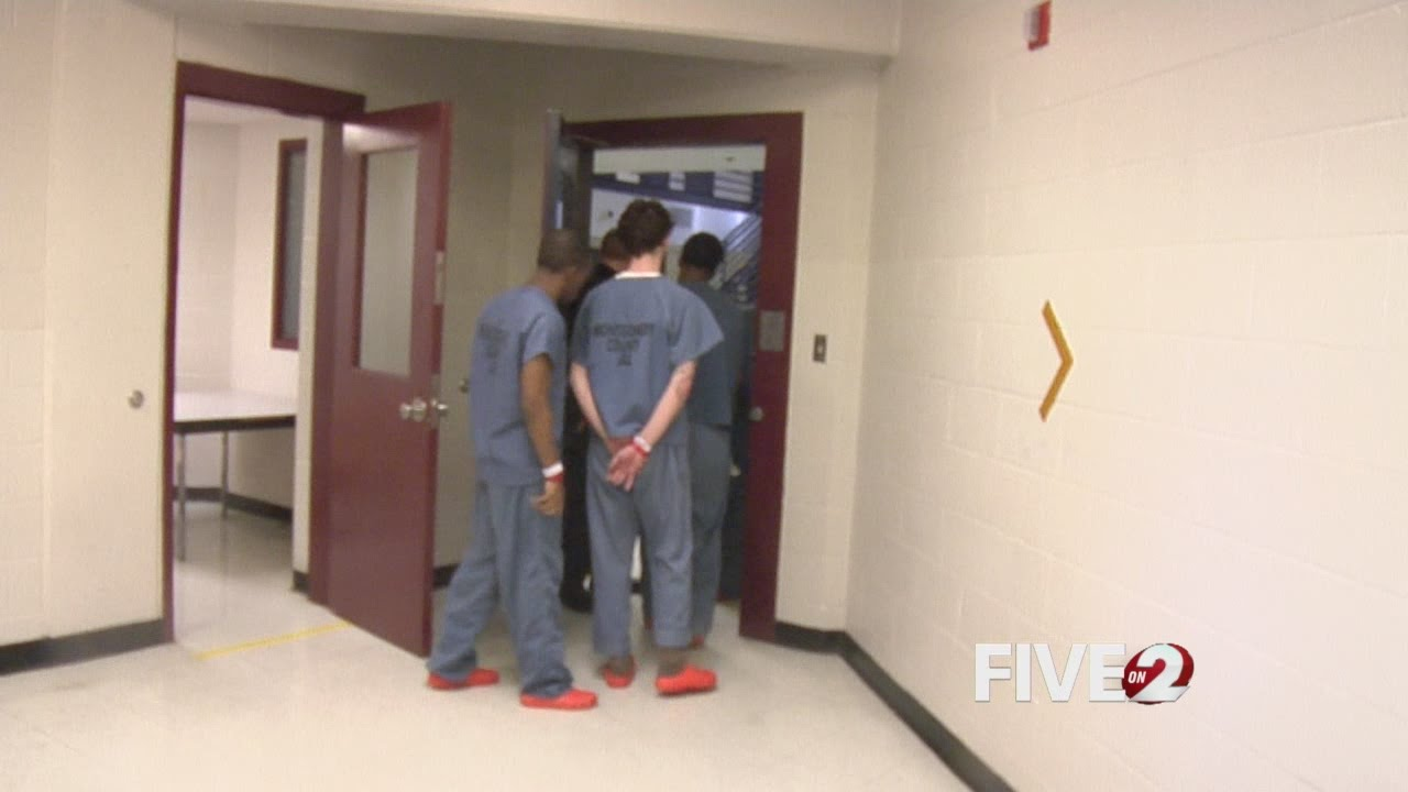 inmate search montgomery co tn jail