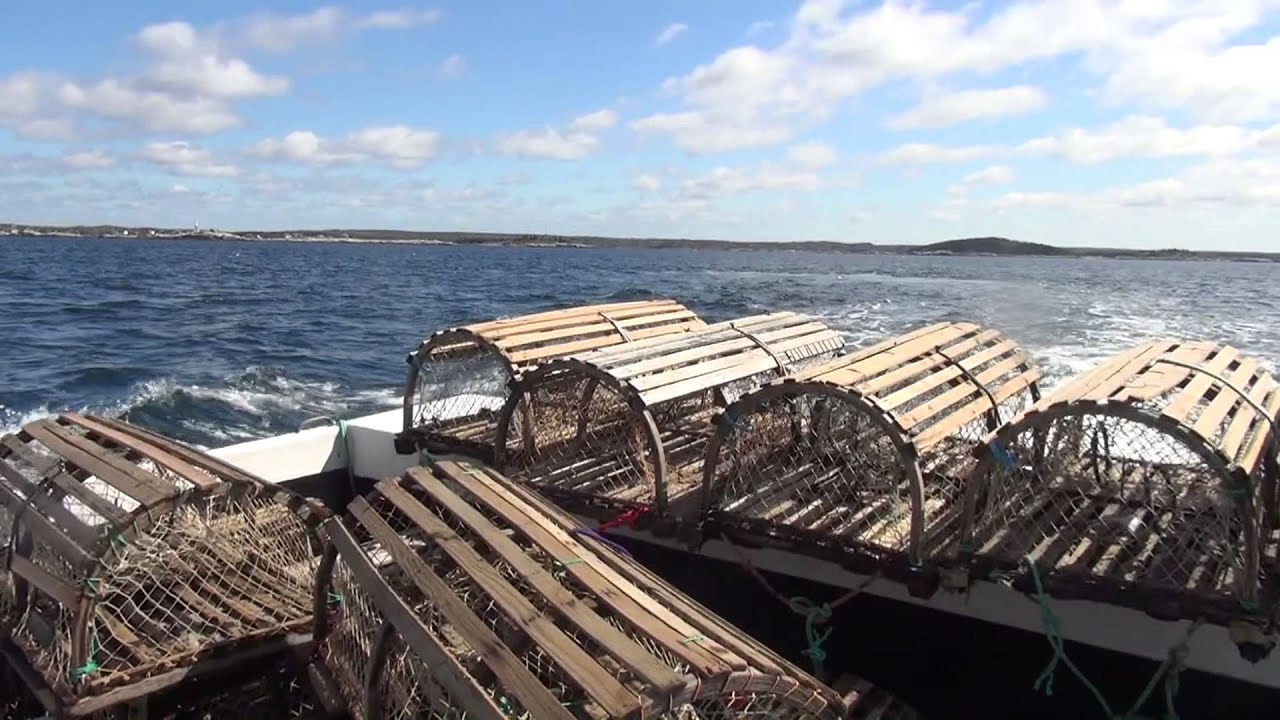 """Lobster Fishing with """"Miss Leary's Cove"""" - YouTube"""