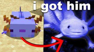I Bought a Minecraft Axolotl i…