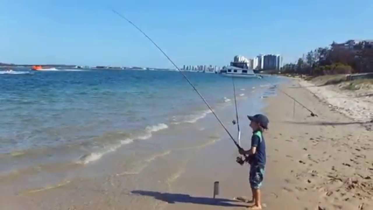 Gold Coast Whiting Fishing Volume