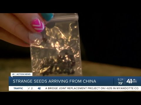 Strange seeds arriving from China