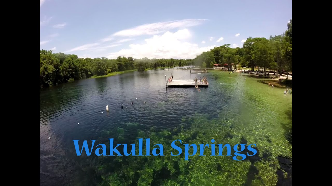 Wild Swimming Picture of the Week: Wakulla Springs