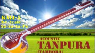 TANPURA [KALI-5] SCALE-A# PLAYED BY SHUBHANGI NARWADE