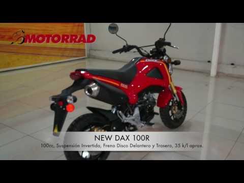 DAX 100R