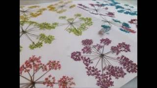 How To Color Dried Flowers. They Look Like Some On Ebay .