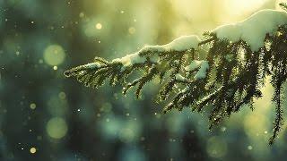 День Зимнего Солнцестояния ( Коляда, Святки, Рождество, Нардуган )