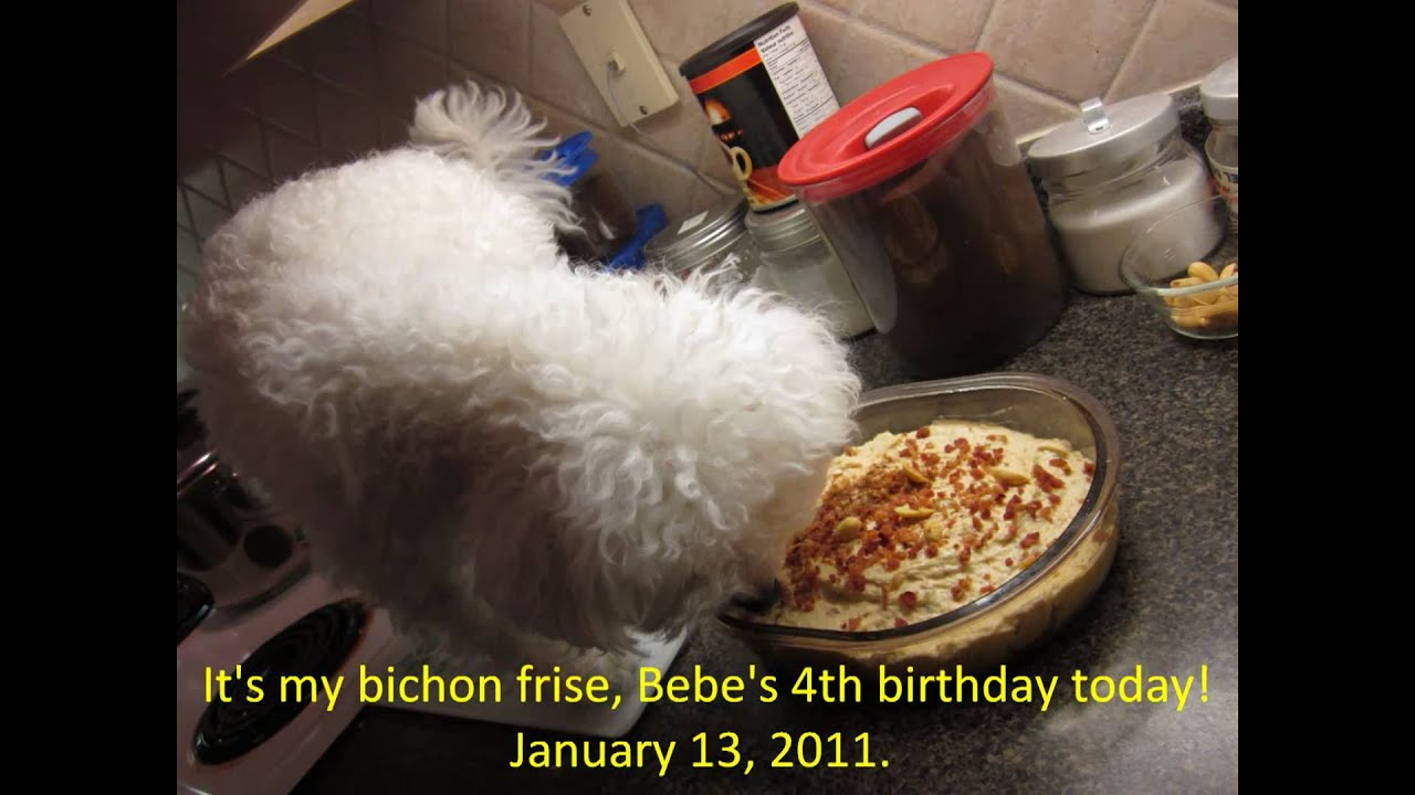 Beef Bacon Dog Birthday Cake Not tasty but edible for dogs AND