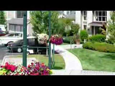 Apartments For Rent In Mukilteo