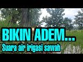 Suara Terapi Air Suara Air Terapi Air   Mp3 - Mp4 Download