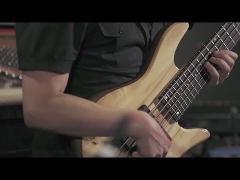 BRYAN LADD - Bass Player from New York City