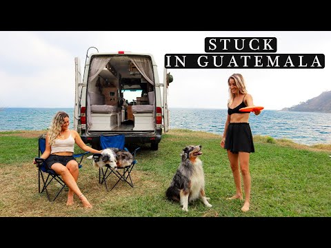 STUCK IN GUATEMALA DURING PANDEMIC | Daily Life as Van Life Dogs Vlog | Dog Video