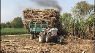 Ford tractor 4610 stuck with 8 wheel trailer in my village Must Watch