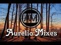 Gestört aber Geil Mix 2017 [Aurelios Sommer Edit]