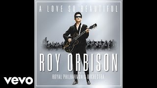 Watch Roy Orbison A Love So Beautiful video