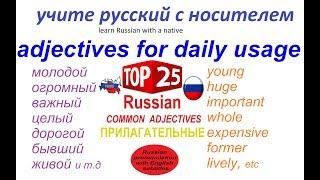 Русский язык - 25 наиболее используемых прилагательных - изменение по родам