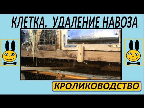 Кролики конструкция клетки. Удаление навоза.