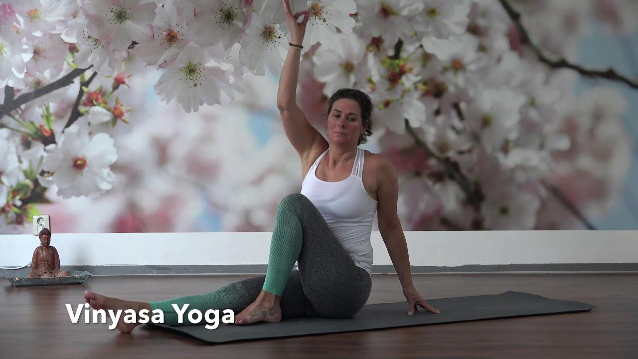 Vinyasa Yoga by Carola at Yoganesa Rotterdam
