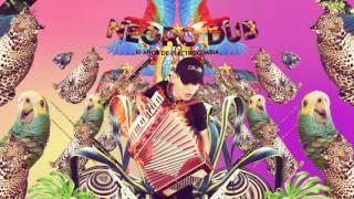 Andres Landero - Sabor A Gaita (Negro Dub Remix)