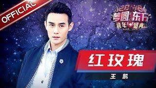 王凯《红玫瑰》—东方卫视2018梦圆东方跨年盛典【东方卫视官方高清】