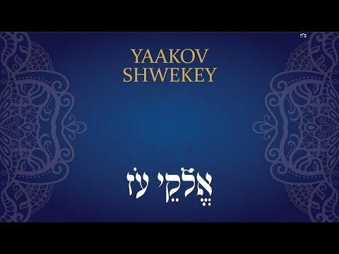 יעקב שוואקי   אֱלֹהֵי עֹז   Yaakov Shwekey   ELOKAI OZ