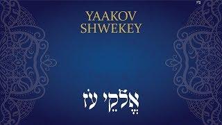 יעקב שוואקי | אֱלֹהֵי עֹז | Yaakov Shwekey | ELOKAI OZ