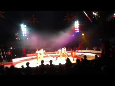 Zippo's Circus - Sheffield - 2013 - Havana Troupe (Chair Stunt) (Stunt Team)