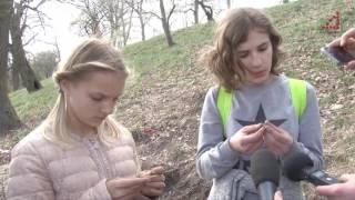 Скарб з польськими монетами викопали учні 24 школи під час уроку біології