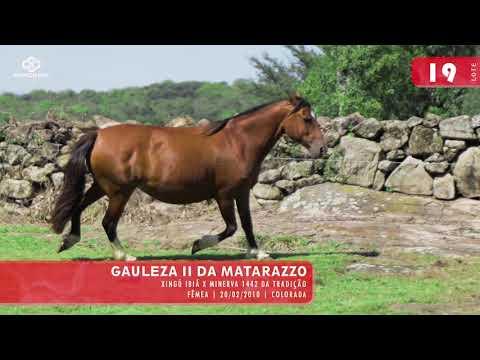 Lote 21 - Gauleza II da Matarazzo