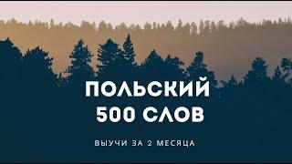 500 слов ПОЛЬСКОГО языка. Польский за 2 месяца