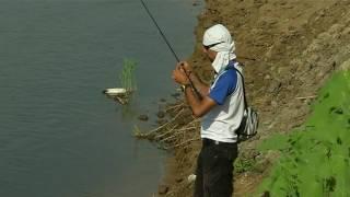 видео Отдыха и рыбалка на ахтубе [10 лучших баз отдыха на реке ахтуба]