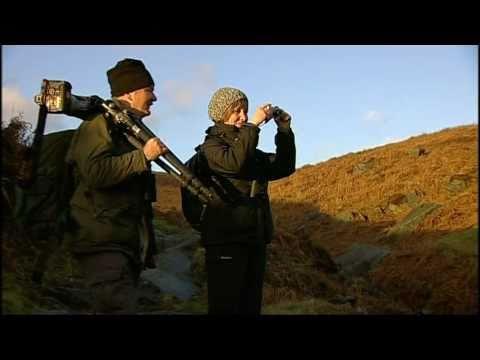 """BBC East Midlands Today """"Sally Goes Wild"""" Peak Dis..."""