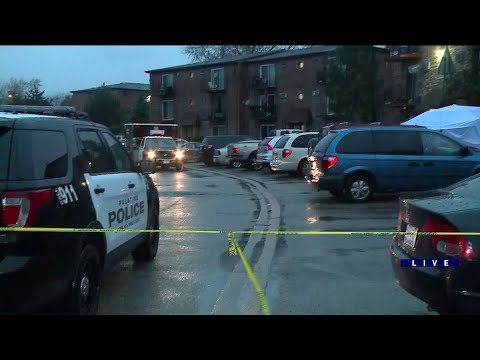 2 Teens Shot At Apartment Complex In Palatine