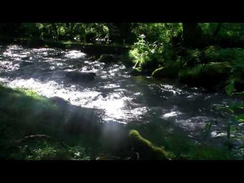 Beagle Musik Ltd. - Daydream