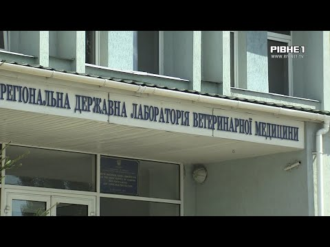 TVRivne1 / Рівне 1: Скажений карантин