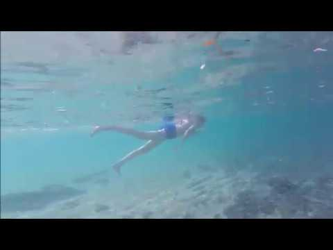 Eleuthera Snorkeling Rainbow Bay Beach 2017