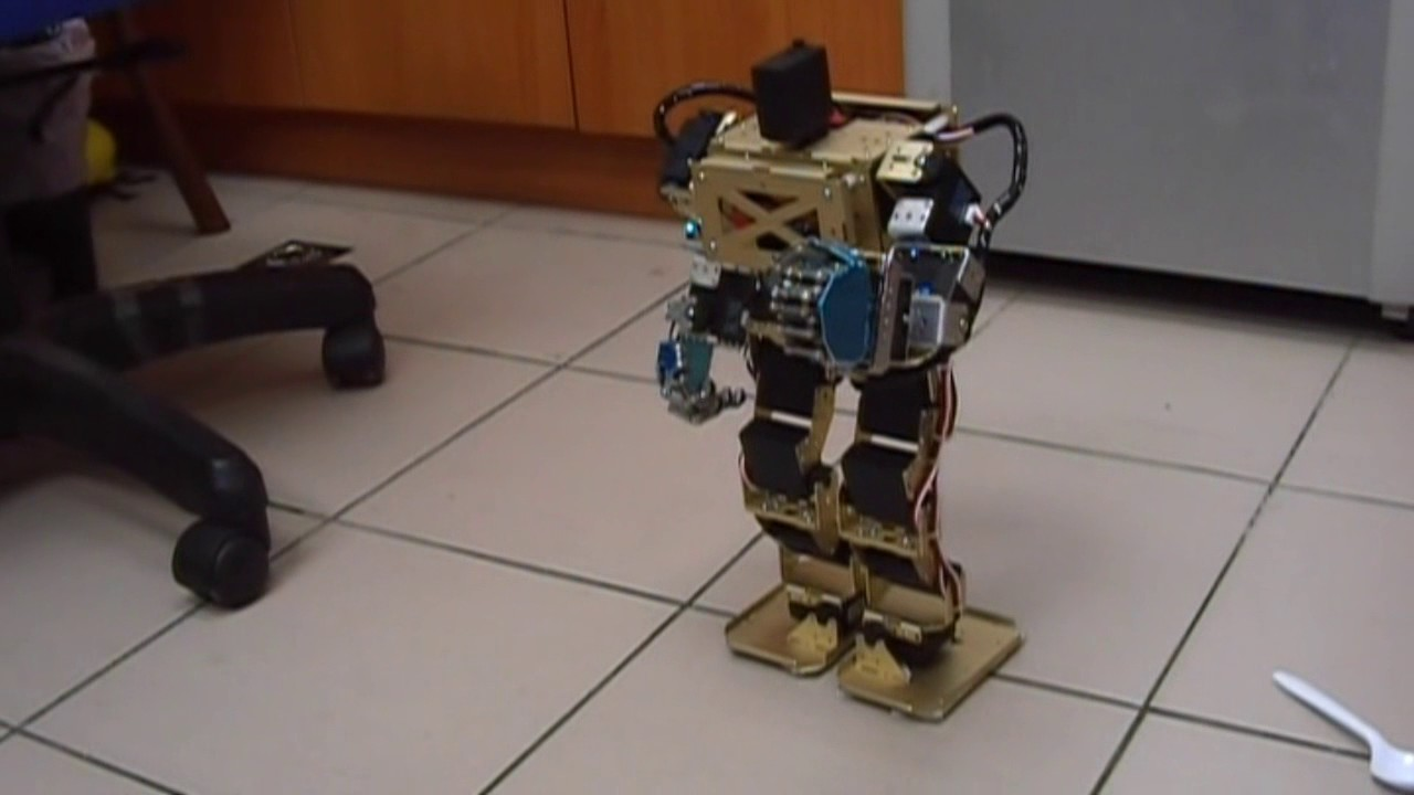 Arduino humanoid robot with robotic palms 帶可控手掌之arduino